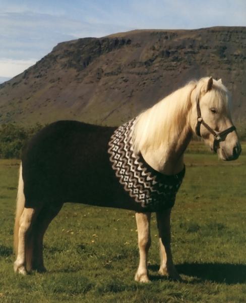 Strickpaket Umhang für Islandpferde (Abschwitzdecke) Nr. 25 / 26